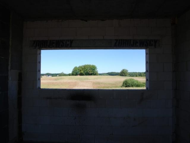Okno w kuchni skierowane jest na niezabudowany teren z kępą zieleni.